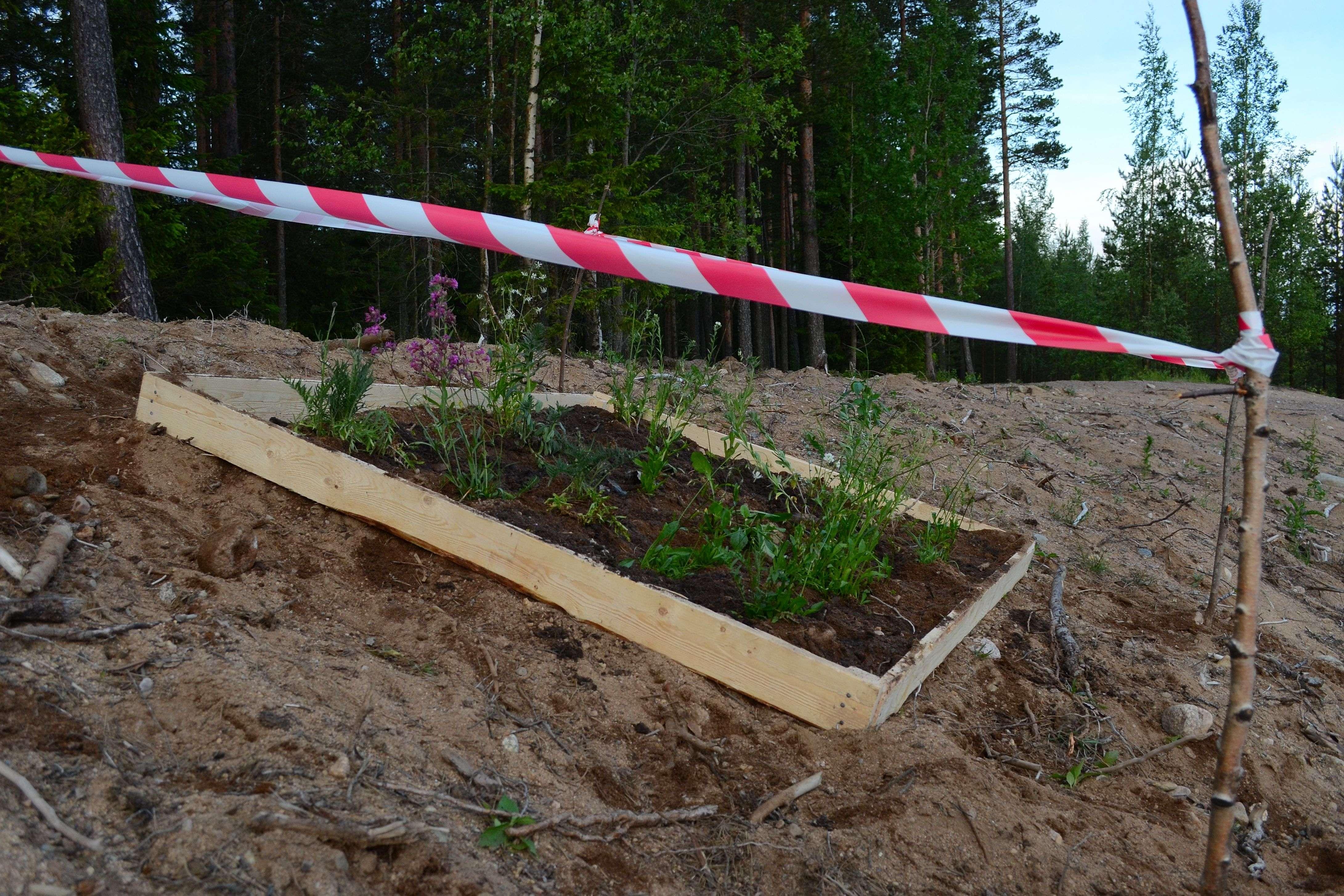 TyMaKesäk2015Low_094