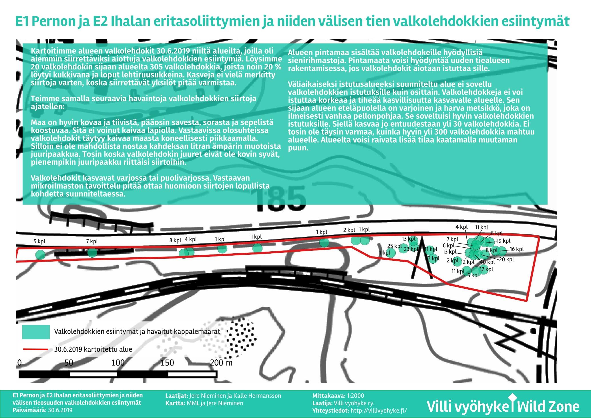 Perno_Valkolehdokit A3_Villi vyöhyke_1.7.2019_2-sivu001